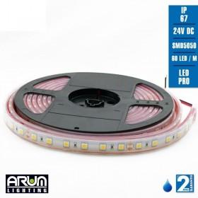 Rouleau de 5m PRO 24V 5050 60LED/M 2700K IP67