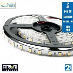 Rouleau de 5m PRO 24V 5050 60LED/M 4000K IP33