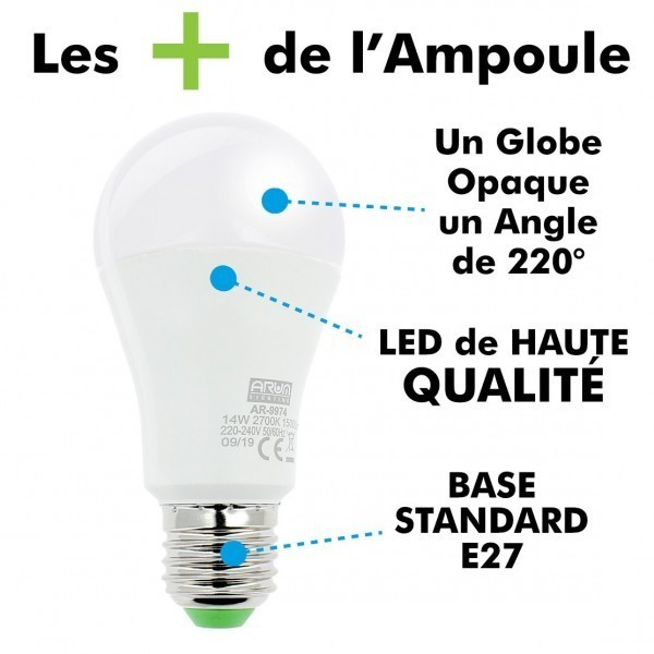Lot de 5 ampoules LED E27 14W Eq 100W