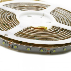 Strip LED 5Mètres SMD3528 - 60LEDs Blanc Froid IP65